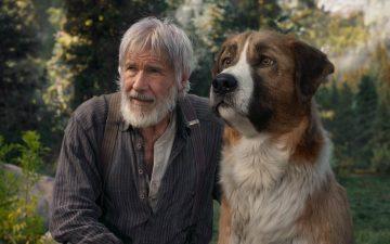 Film Keluarga The Call of the Wild